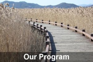Our program for alcohol or drug addiction rehabilitation near the Gold Coast